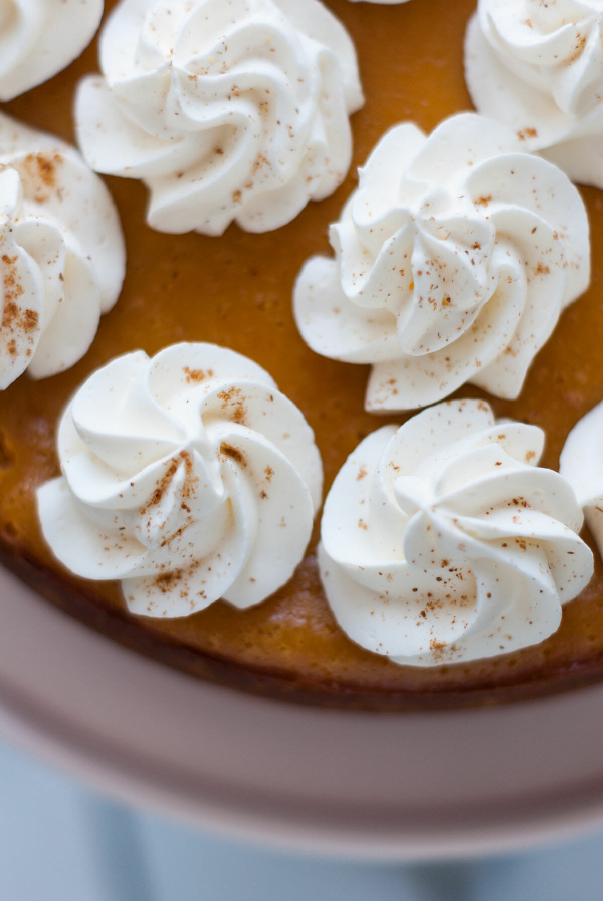 Lilie Bakery | Pumpkin Cheesecake à la Cannelle 1